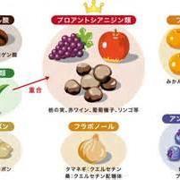 続・酸化と糖化