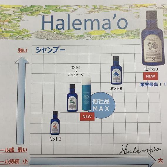 業界No.1クールシャンプー「ハレマオ」に新ラインナップ!!